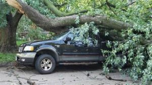 Picture of a black truck damaged due to a large branch falling off a tree in Lafayette, IN
